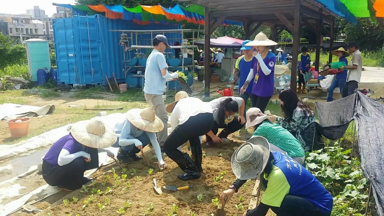 國際志工陪著服務機構的街友一起整理農地。記者徐白櫻/攝影