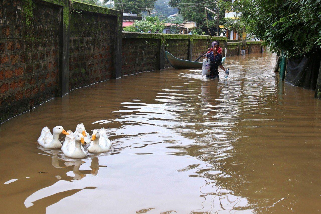 印度南部克勒拉省豪雨成災。 歐新社