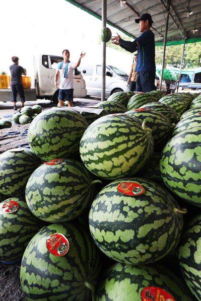 酷暑讓南韓西瓜價格飆漲。圖為京畿道水原市果菜市場中成堆的西瓜。 (歐新社)