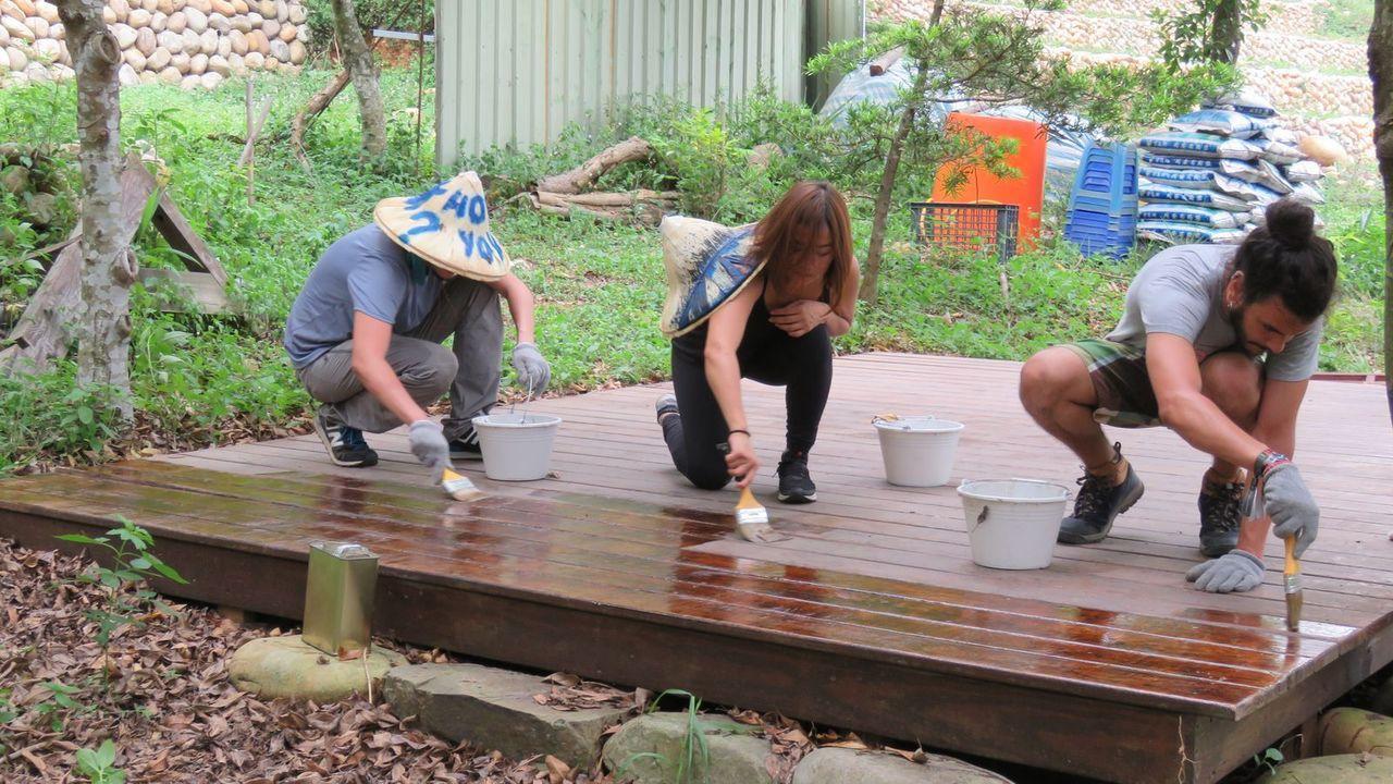 來自8個國家的國際青年志工,進駐桃園市龍潭大北坑休閒農區,展開為期半個月的農村生...