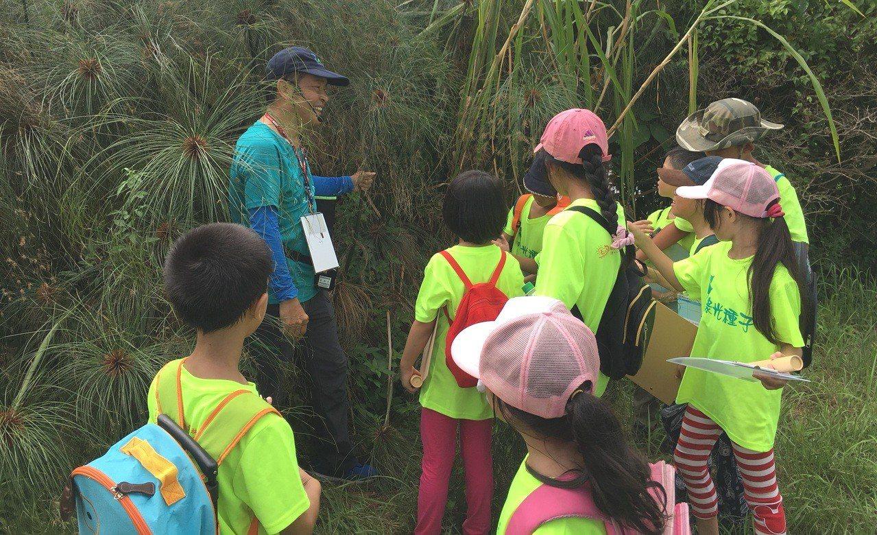 導覽老師帶領小朋友認識濕地及四周植物,小朋友用心聽老師講解。記者陳斯穎/攝影