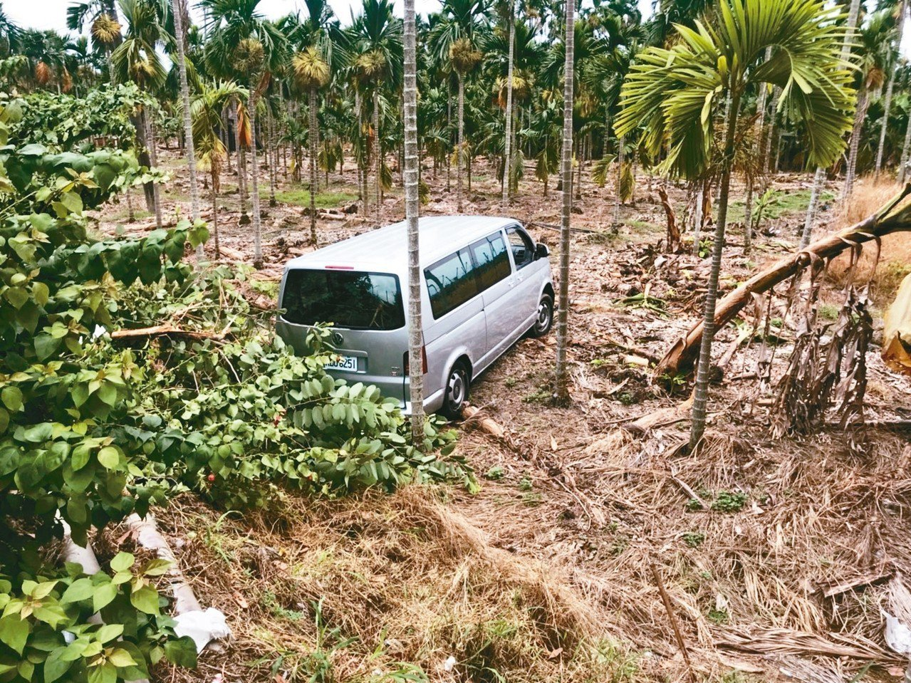載試卷的廂型車被撞入檳榔園,司機鼻梁擦傷。記者潘欣中/翻攝