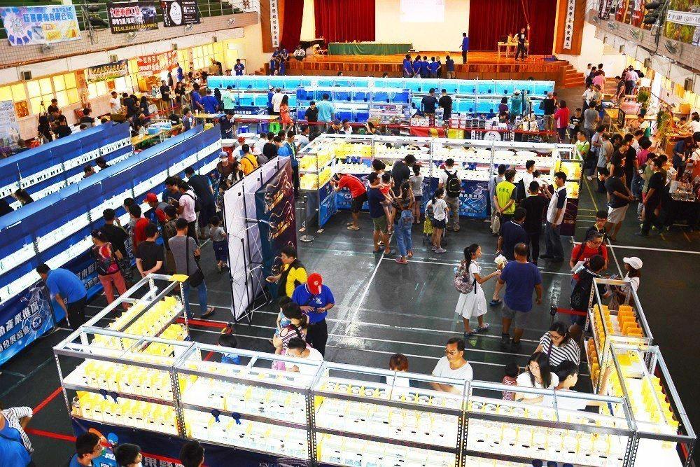 昨天起連續3天在屏東市縣仁愛國小舉辦的觀賞魚推廣國際交流賽。記者潘欣中/翻攝