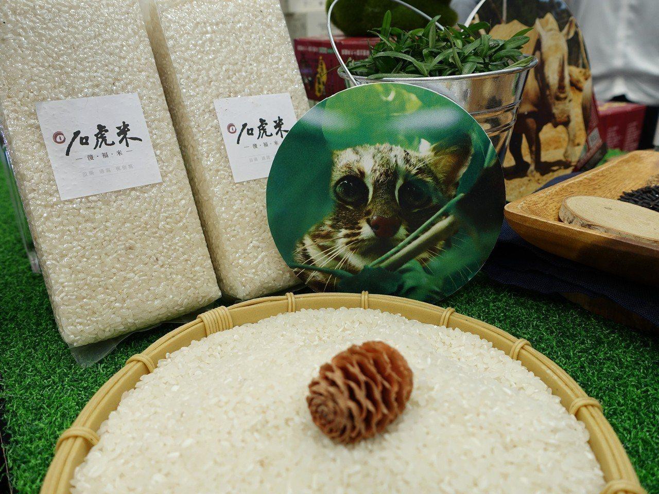 苗栗楓樹窩石虎米,售價110元/600g。記者張芳瑜/攝影