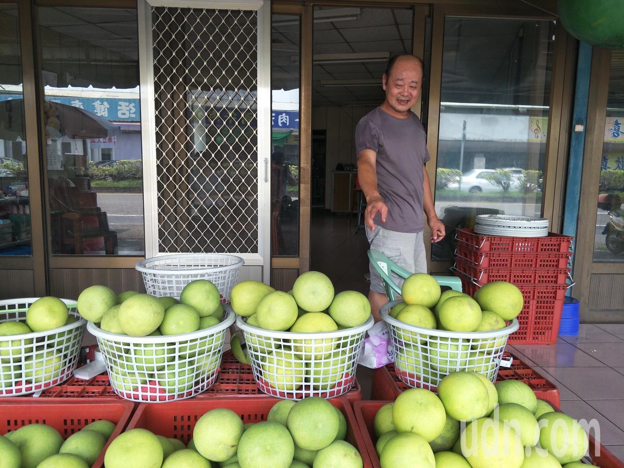 步入農曆7月,著名麻豆文旦早生種已上市。記者謝進盛/攝影