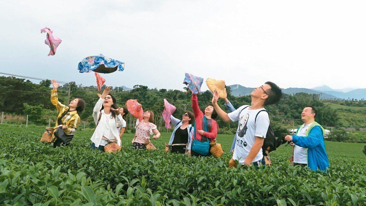 知本採茶體驗。 圖/知本溫泉觀光發展促進協會提供