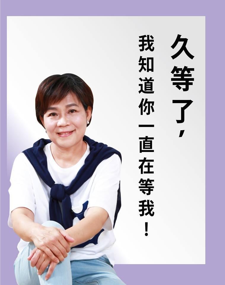 楊麗環在臉書貼出新文宣。圖摘自楊麗環臉書