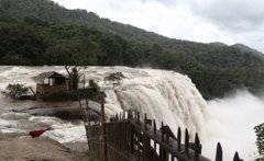 印度雨季洪水成災淹7省 全國已774死