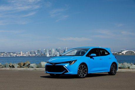 Toyota Corolla掀背車超熱門 可能推出油電性能版本?