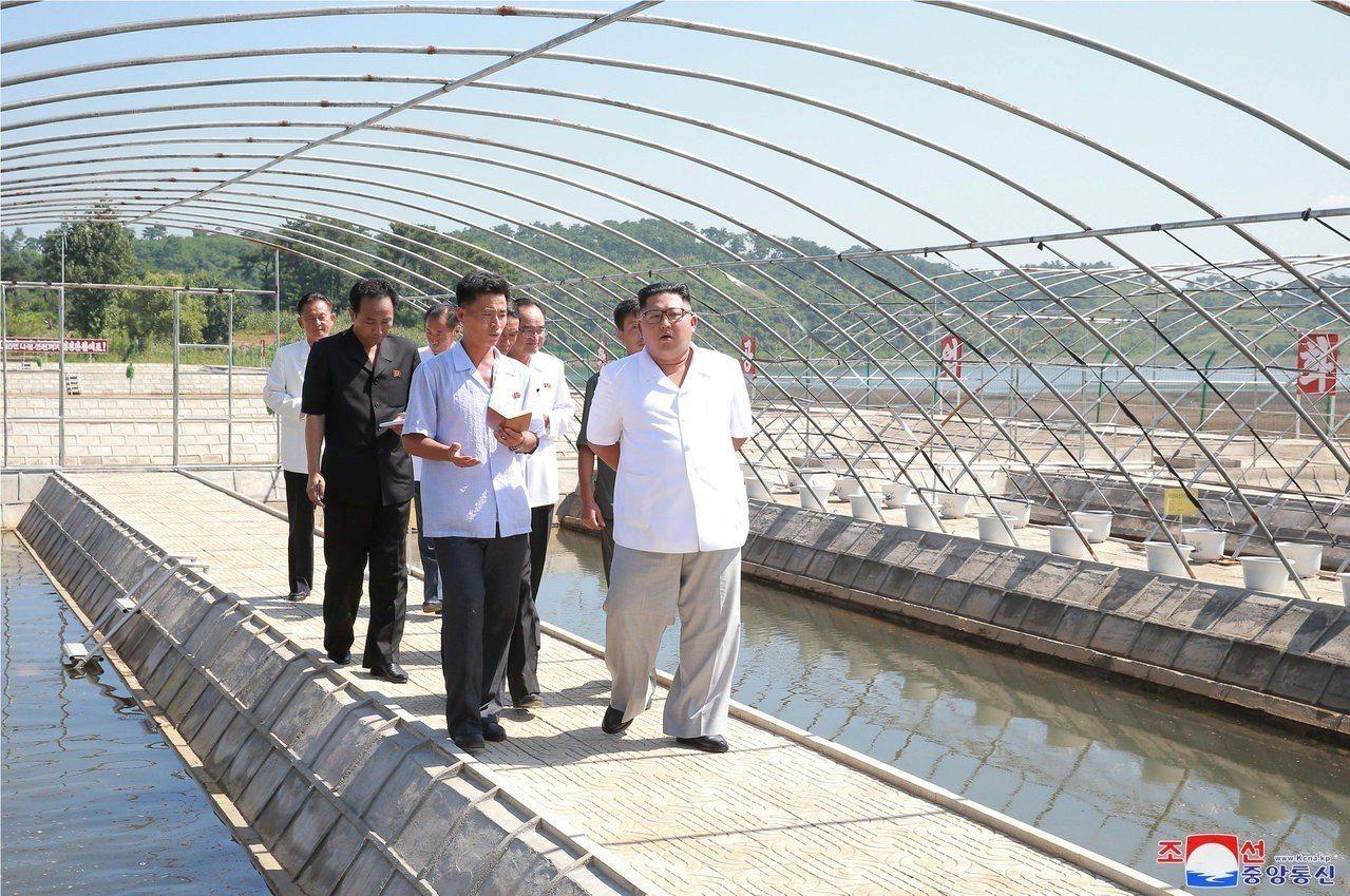 北韓中央通訊社13日發布北韓領導人金正恩至永鈴湖漁場視察的照片,但未透露視察的確...
