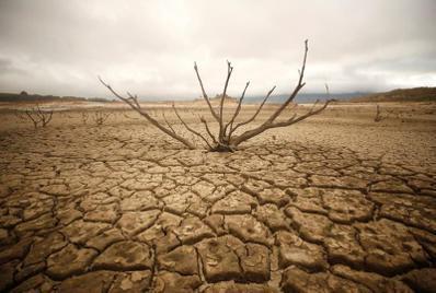 氣候變遷恐令乾旱發生頻率增加。 (路透)
