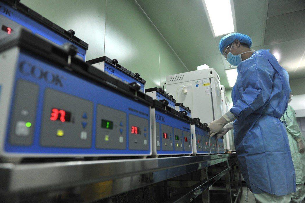 四川大學華西第二醫院生殖醫學中心將胚胎放在37度浮箱中。(中新社)