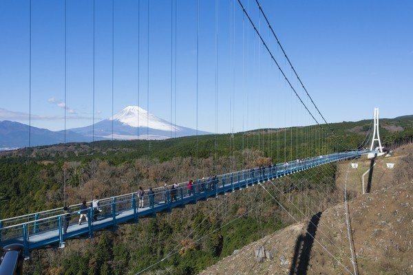 「箱根西麓三島大吊橋(三島SkyWalk)」為日本第一長的步行者專用吊橋,可遠眺...