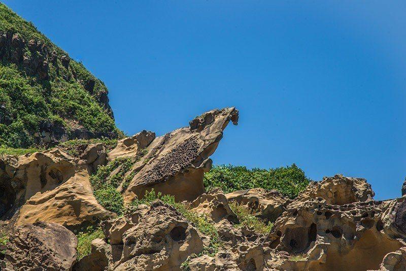 站在岩頂上的黑鳶岩傲視四方  攝影|行遍天下