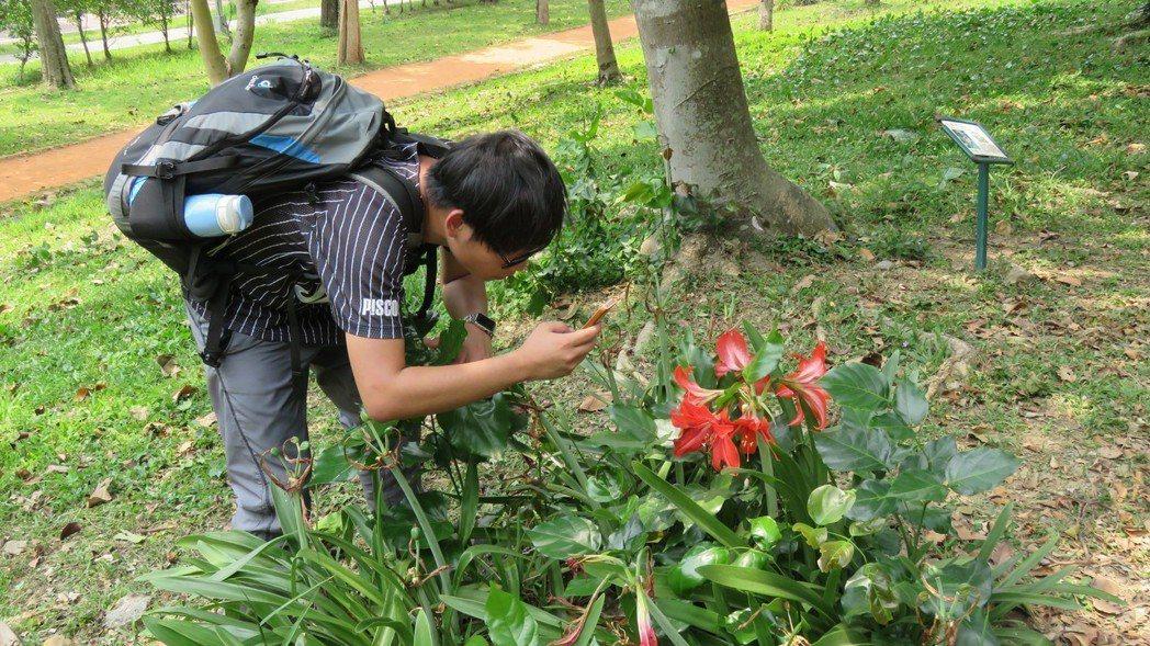 國內三位工程師聯手,透過AI技術,開發台灣首款「植物辨識圖鑑app」,未來可望拓...
