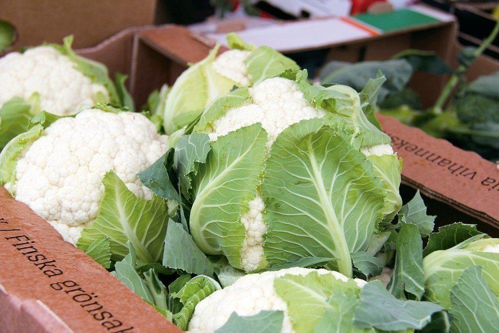 白花椰菜。 圖/123RF