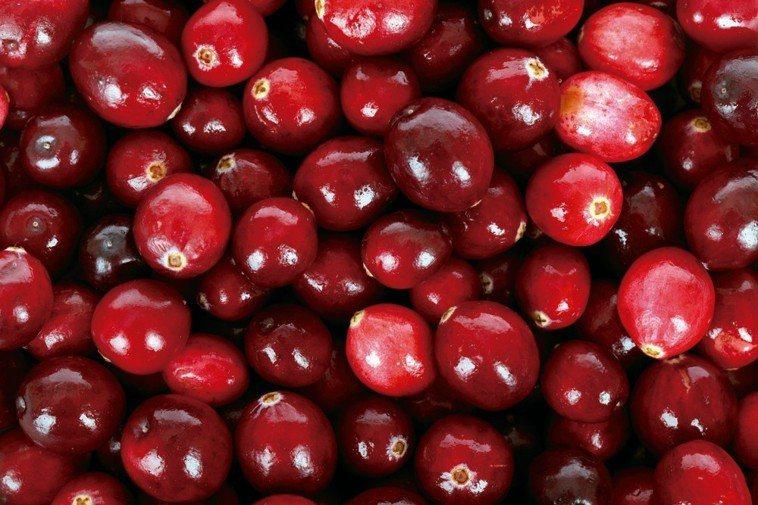蔓越莓 圖/123RF