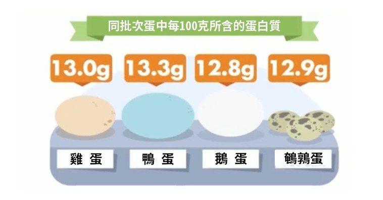圖1,四種蛋的蛋白質含量。取自微博