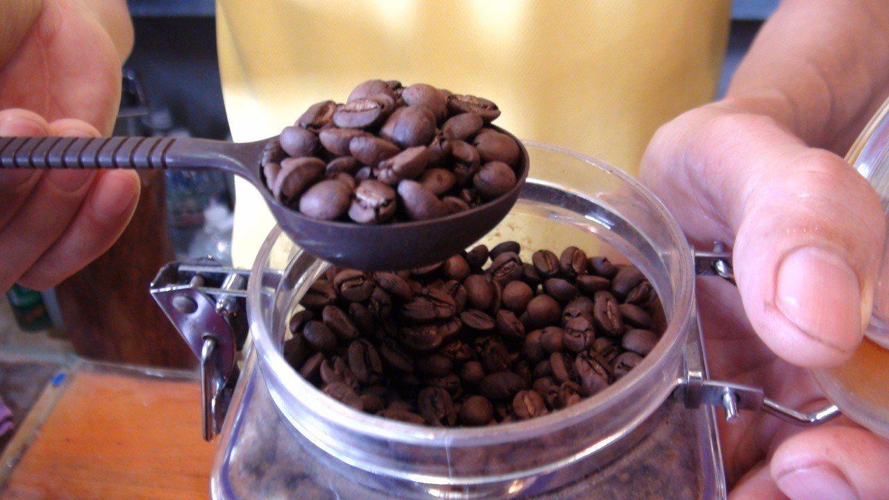 田同宏栽種的咖啡經過檢驗未驗出農藥。記者謝恩得/攝影