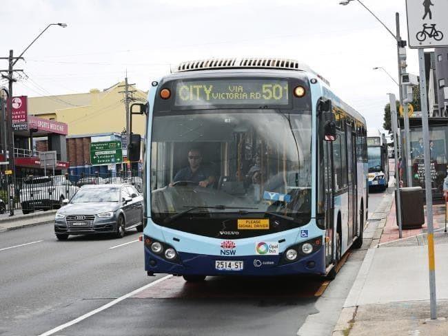 巴士(Bus)。 圖/dailytelegraph.com.au