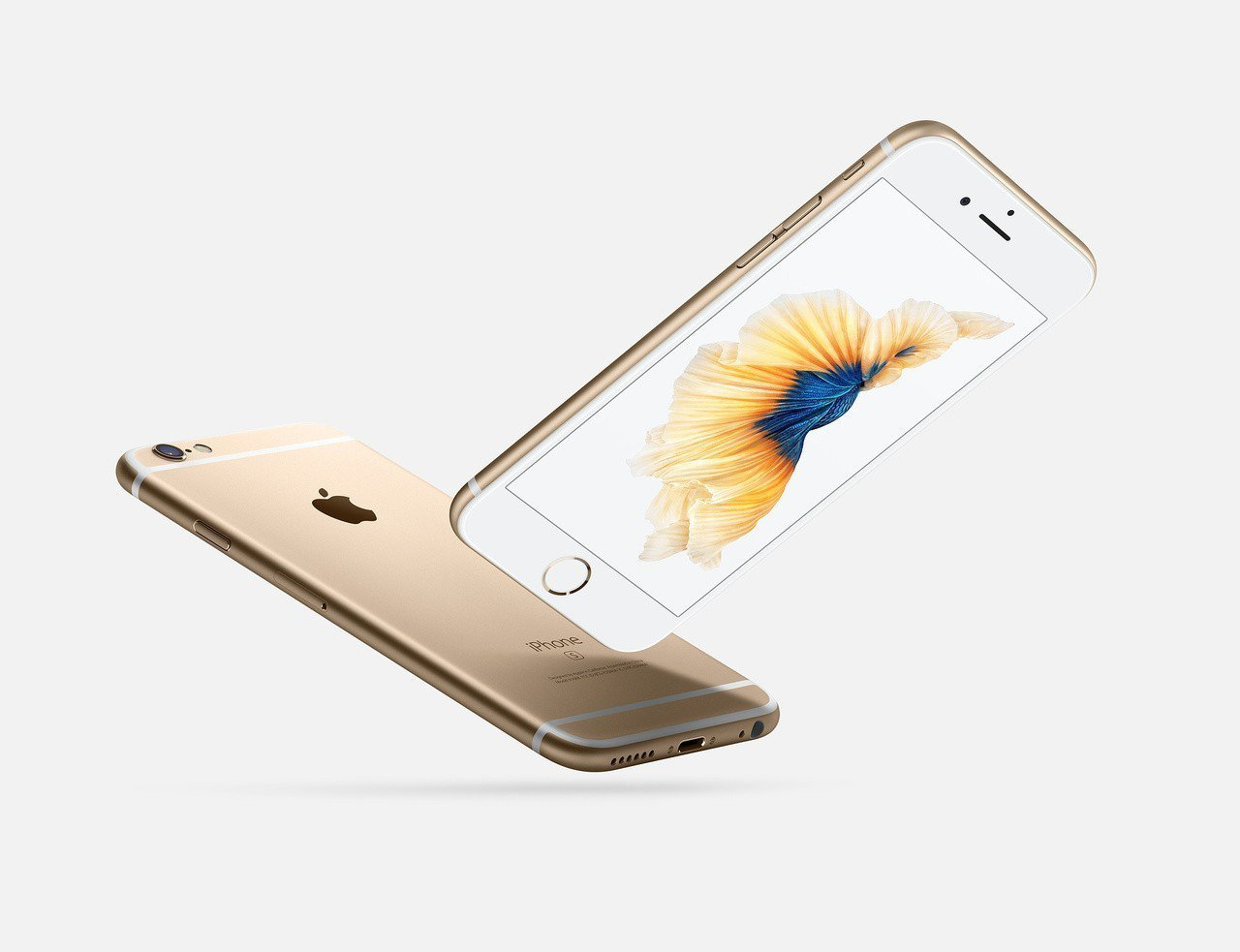 蘋果新iPhone手機發布日越來越近,外資回頭買超大立光,帶領蘋概股今天回穩反彈...