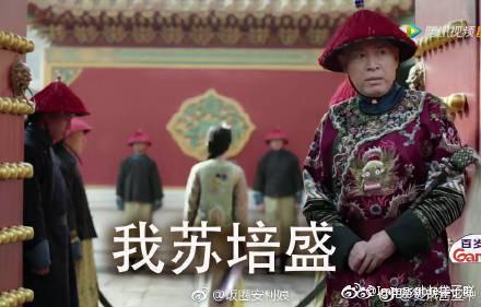 沈保平在「如懿傳」中演雍正身旁的大太監「蘇培盛」。圖/摘自微博
