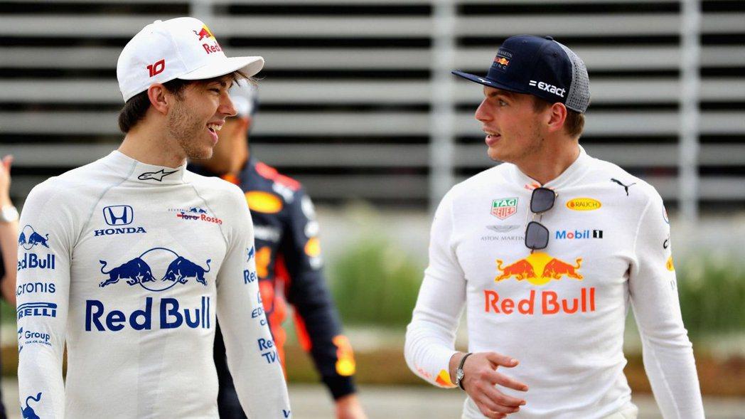 Pierre Gasly(左)與Max Verstappen(右)明年將會是紅牛...