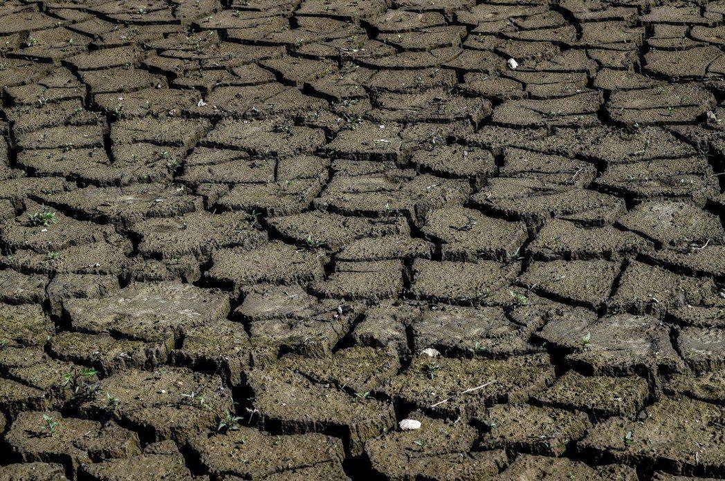 德國許多河流和水壩都在長期乾旱中掙扎。圖/歐新社