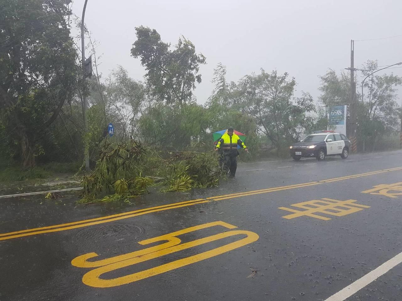 三分局員警冒著風雨清倒在路面的樹木。圖/員警提供