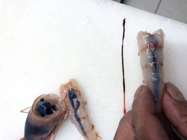 廚師剔除蝦腸保留蝦膏。 圖片來源/布咕布咕美食小天地