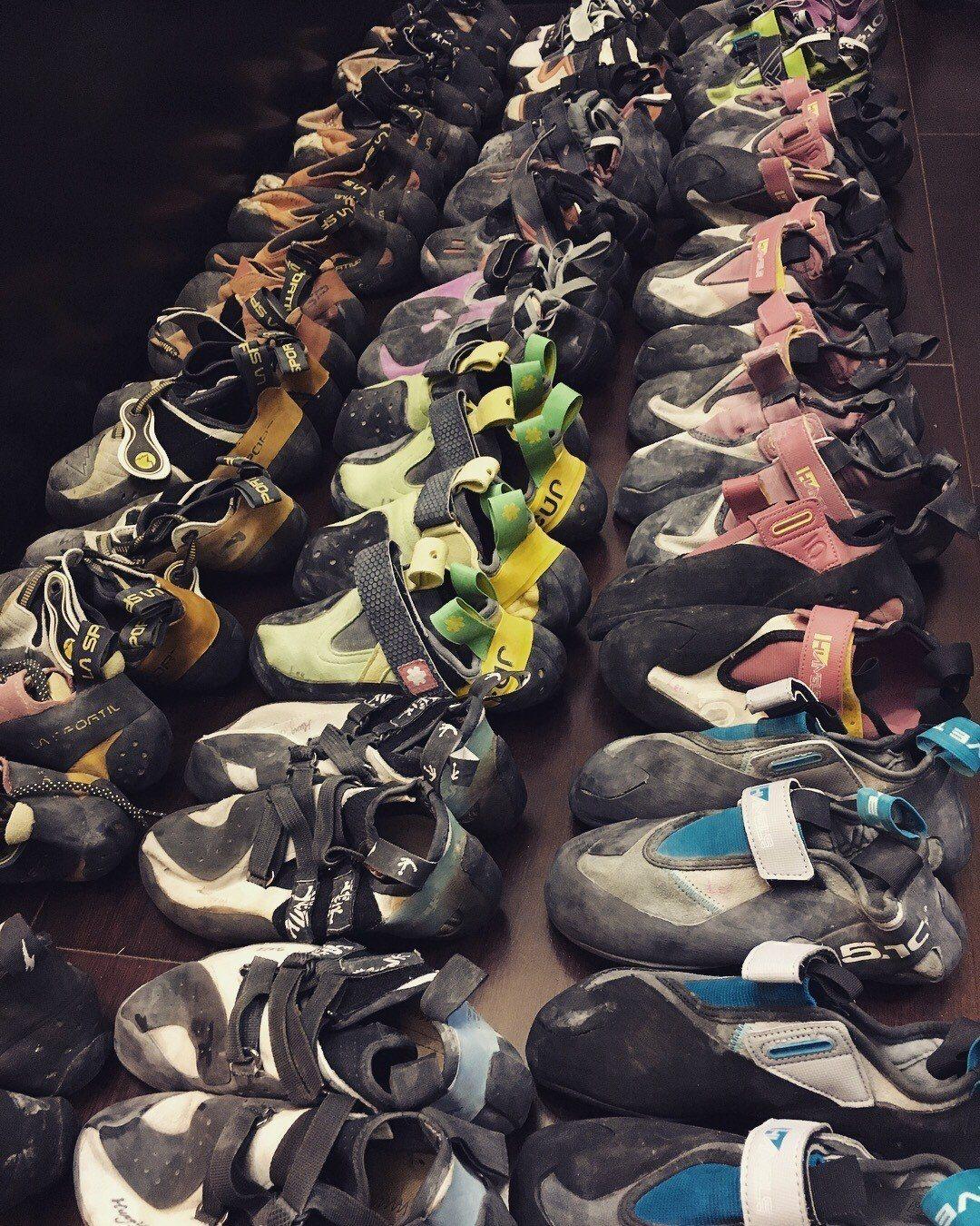 李虹瑩14年來穿過的攀岩鞋。 圖 / 李虹瑩提供