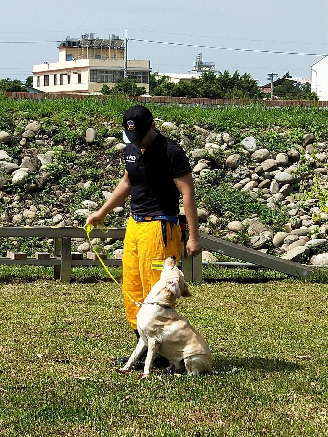 台中的搜救犬除了在地震瓦礫中救人,並新增尋人任務。 記者張明慧/攝影