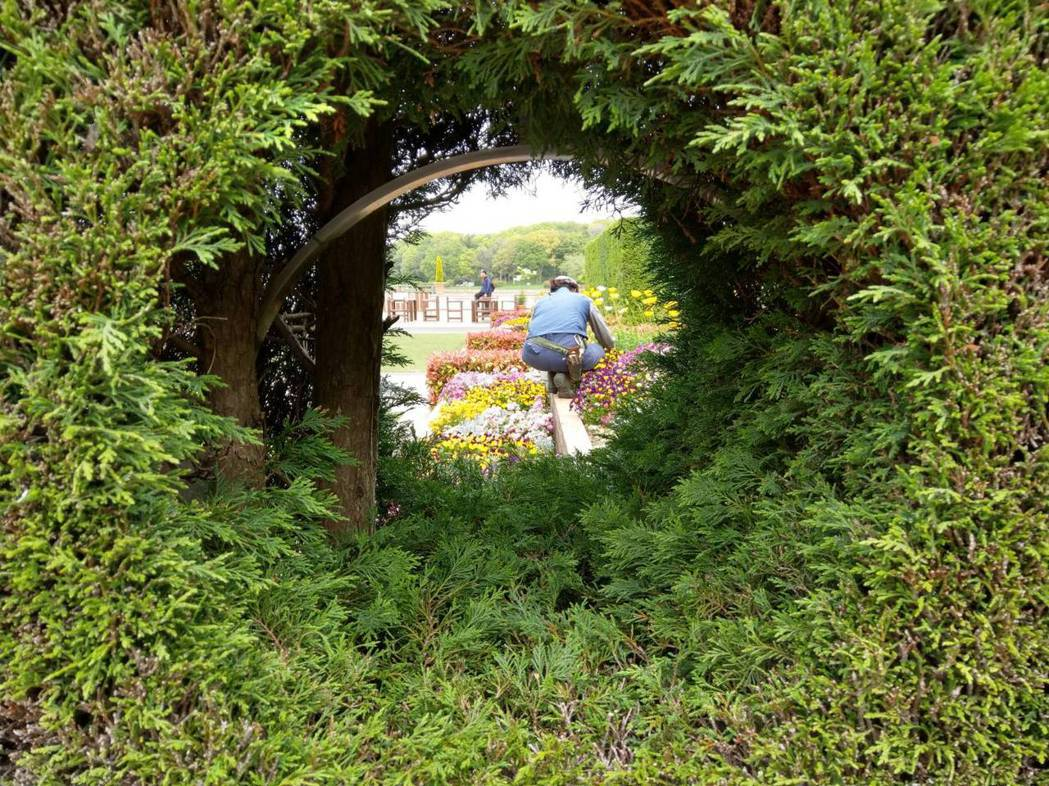 台日合作「療癒庭園」,首座落在大安森林公園,預計明年完工啟用。圖/台北市政府提供