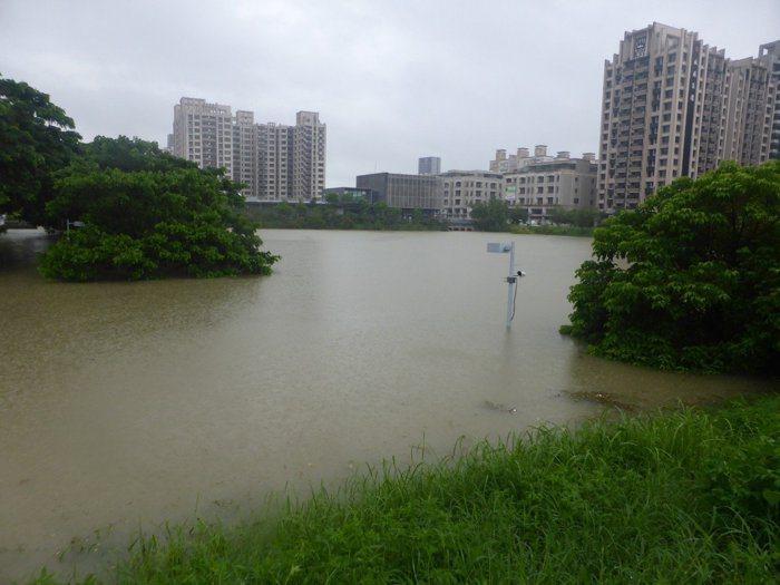 高雄市三民區寶業里滯洪池滿水位。 圖片來源/聯合報系 記者楊濡嘉攝影