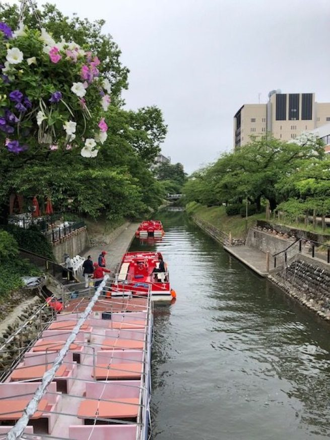 春天兩岸櫻花盛開,搭船遊河賞櫻是非常受歡迎的活動 圖文來自於:TripPlus