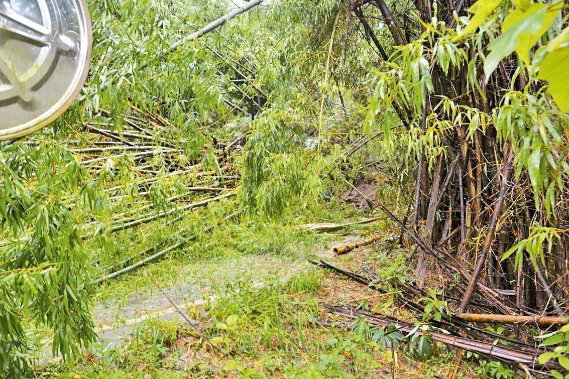 台南市左鎮區二寮道路邊坡坍方中斷,開學日影響學生無法外出上學。 記者吳淑玲/攝影