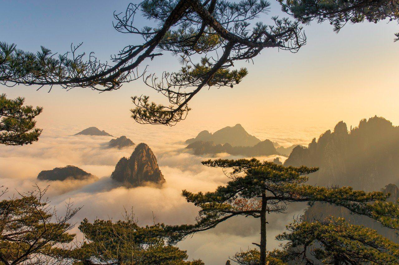 如詩如畫的黃山雲海。圖片提供/旅遊經