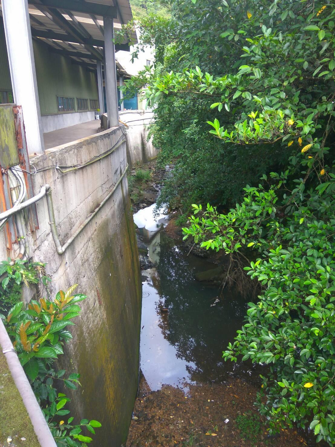 市府環保局派員採樣追查禍首,為上游非工業區範圍內一家廠商,排放呈強酸性清潔液導致...