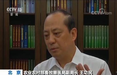 大陸農業農村部畜牧獸醫局副局長王功民指出,目前確診的疫情,都是用泔水喂豬,因此懷...