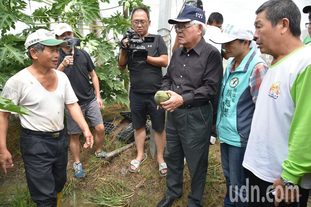823豪雨致災,雲林縣農民申報農損面積今天達到2萬6980公頃、申請補助金額達7...