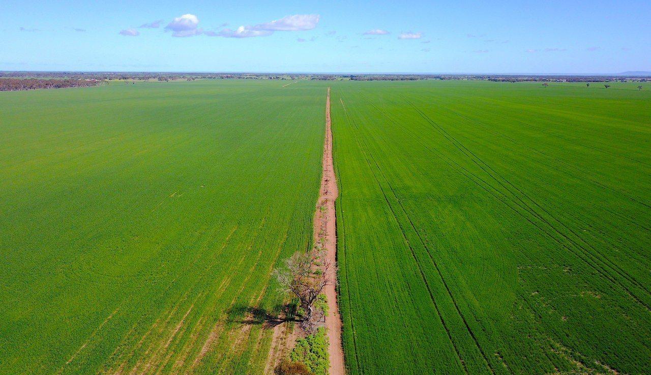 根據澳洲聯邦科學與工業研究組織(CSIRO)的新研究計劃,澳洲北部有望成為產值可...