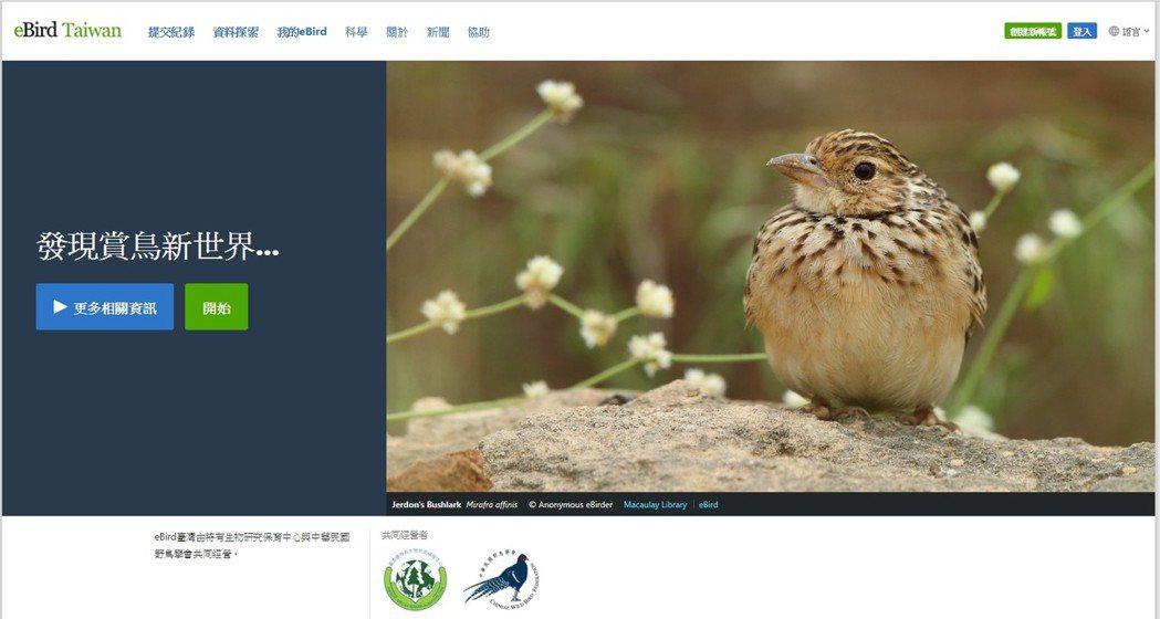 eBird是一個蒐集了全世界超過30萬用戶賞鳥紀錄的資料庫與共享平台。 圖/截自...