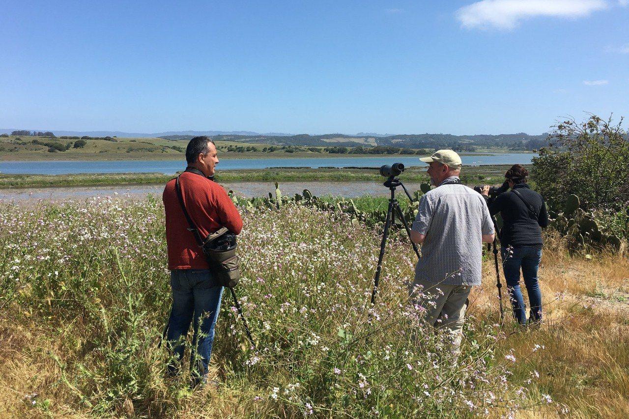 成千上萬的賞鳥者,可透過eBird上傳他們所觀測到的鳥類之時間、地點、種類和數目...