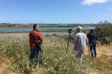 鳥人的寶可夢:透過賞鳥,參與全球鳥類公民科學計畫