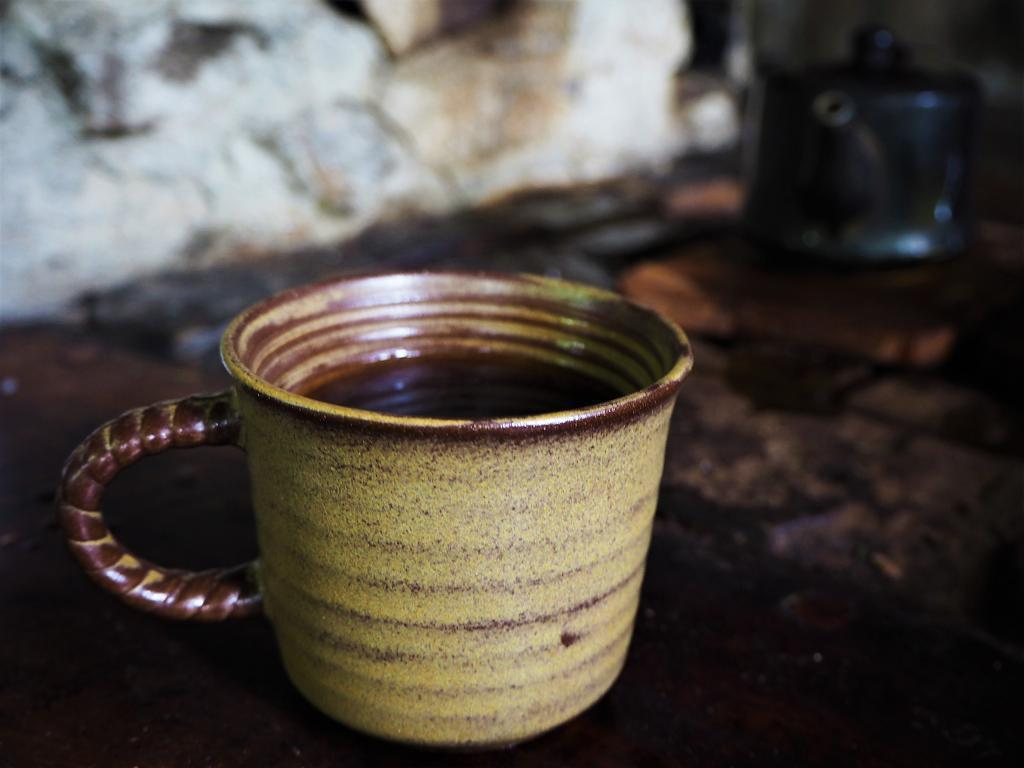 ▲原鄉秘境-阿里山咖啡。(圖/Tripbaa趣吧!亞洲自由行專家)