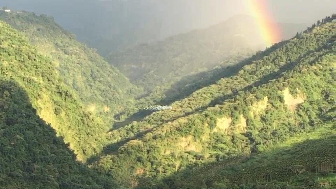 9月1日傍晚數千隻黃頭鷺通過太興村上方飛行,背後還襯著彩虹,非常壯觀、漂亮。圖/...