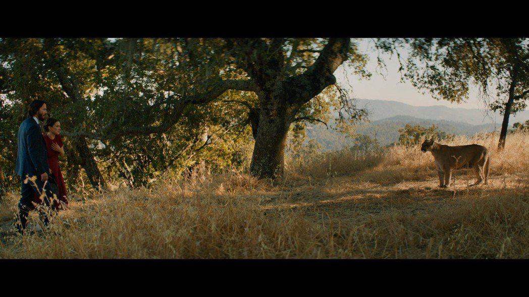 基努李維(左)突破演出,片中坦言自己太久沒跟人親熱,久到讓他想自殺。圖/甲上娛樂...