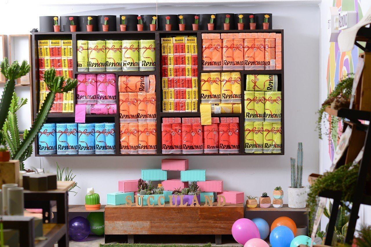 有肉、RENOVA聯名舉辦彩虹趴。圖/有肉Succulent & Gift提供