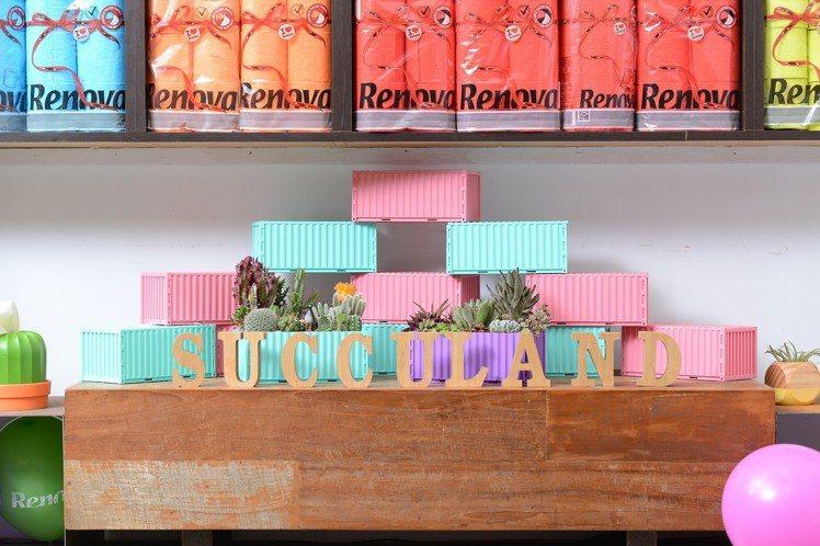 貨櫃屋面紙盒化為多肉植物盆器。圖/有肉Succulent & Gift提供