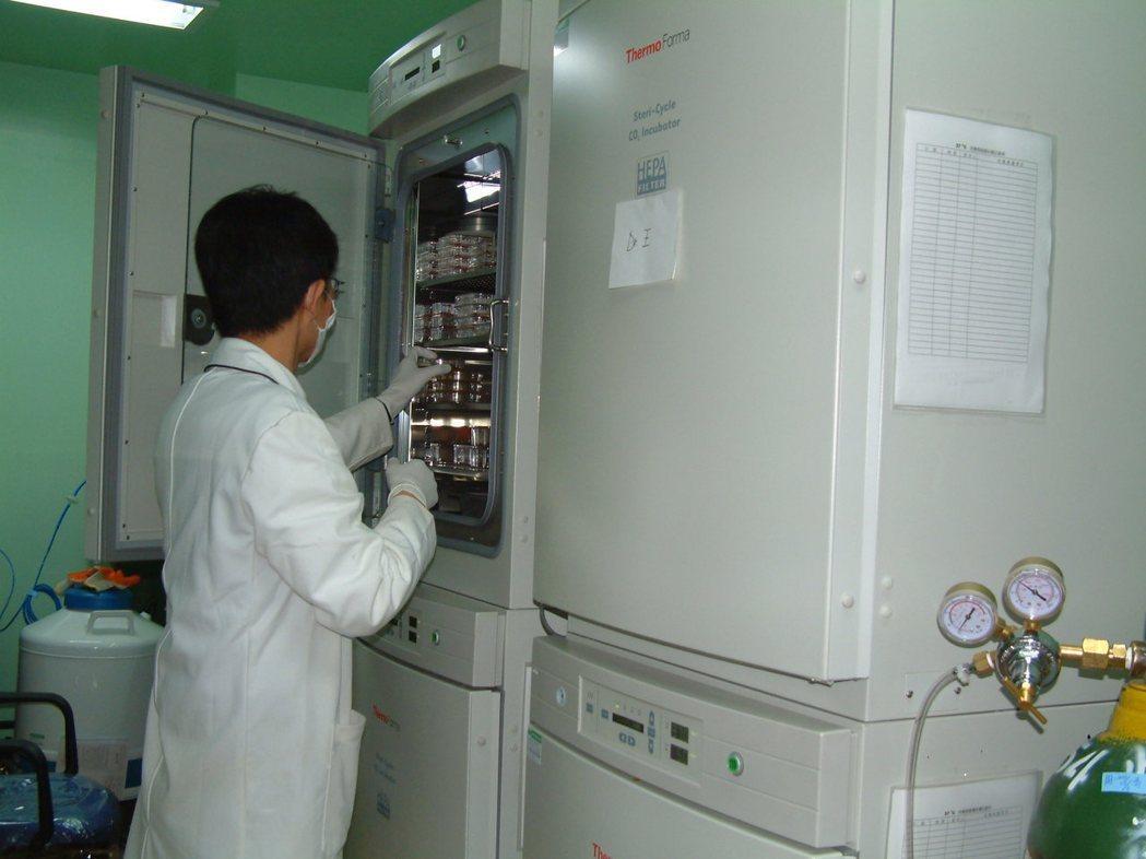 台灣癌症免疫細胞協會表示,希望細胞治療開放後,醫院盡快公告治療收費標準、公平競爭...